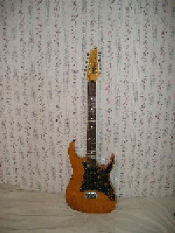 Ibanez Collectors World: RT452AM 12 String